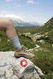 Montaña que va de excursión - cargadores del programa inicial - el camino Foto de archivo