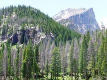 Montaña, río y tres rocas Foto de archivo