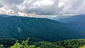 Montaña Ridge cubierto con los bosques en nubes densas imagen de archivo