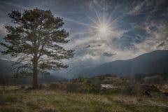 Montaña rocosa alta foto de archivo libre de regalías