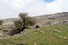 Montaña rocosa Ataviros Fotografía de archivo libre de regalías
