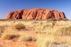 Montaña roja Uluru y arbusto seco Foto de archivo libre de regalías