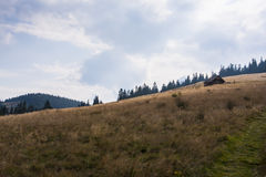 Montaña Rycerzowa, Polonia foto de archivo libre de regalías