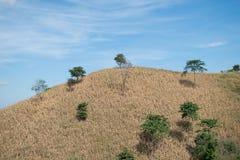 Montaña seca con el fondo del cielo azul Foto de archivo libre de regalías