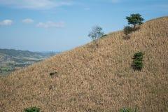 Montaña seca con el fondo del cielo azul Fotografía de archivo libre de regalías