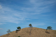 Montaña seca con el fondo del cielo azul Fotos de archivo