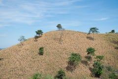 Montaña seca con el fondo del cielo azul Imagen de archivo libre de regalías