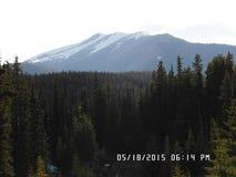 Montaña sobre las MONTAÑAS ROCOSAS CANADIENSES HD del bosque Fotografía de archivo