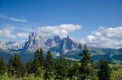 Montaña sobre los árboles Fotos de archivo