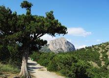 Montaña Sokol en Crimea Foto de archivo libre de regalías