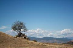 Montaña soleada Georgia Jvari del paisaje Fotos de archivo libres de regalías