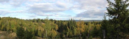 Montaña sueca Imagen de archivo