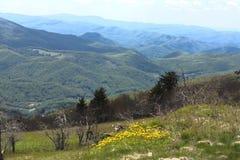 Montaña superior del blanco, Virginia Fotos de archivo