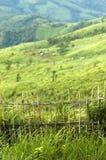 Montaña Tailandia Fotografía de archivo libre de regalías