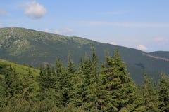 Montaña Tatry, Eslovaquia, año 2010 Fotos de archivo