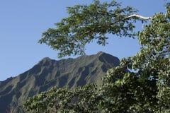 Montaña tropical Imagen de archivo libre de regalías