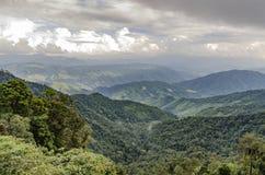 Montaña tropical de la selva tropical Imagen de archivo