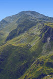 Montaña verde Fotos de archivo