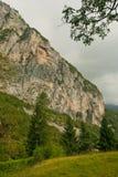 Montaña verde del césped Foto de archivo libre de regalías
