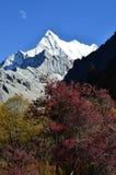 Montaña Xiariduoji de Adén Foto de archivo
