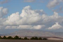 Montaña y árbol adentro, Argelia Imagen de archivo libre de regalías