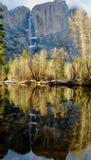 Montaña y árboles de Yosemite duplicados en un río Fotos de archivo libres de regalías