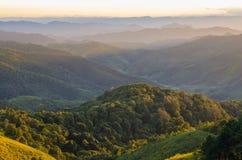 Montaña y bosque Foto de archivo