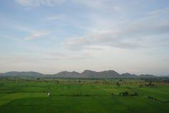 Montaña y cielo verdes de la yarda del arroz Imágenes de archivo libres de regalías