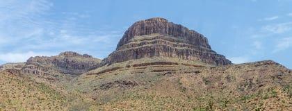 Montaña y Joshua Trees, Grand Canyon, Arizona, los E.E.U.U. del alcohol imagenes de archivo