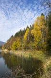 Montaña y lago del árbol del otoño Fotos de archivo libres de regalías