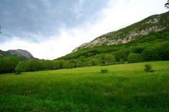 Montaña y prado verde foto de archivo libre de regalías