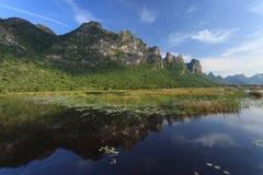 Montaña y reflexión en un lago con angustifolia del loto y de la Typha Fotografía de archivo