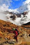Montaña y seguimiento Fotografía de archivo libre de regalías