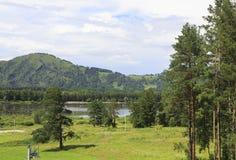Montañas, árboles de pino y lago Manzherok Foto de archivo libre de regalías
