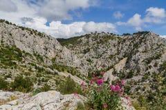 Montañas. Alpes de Provence Fotografía de archivo libre de regalías