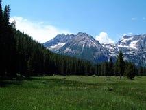 Montañas alpinas del prado y del diente de sierra cerca de Stanley, Idaho 3 Fotos de archivo libres de regalías