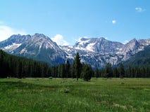 Montañas alpinas del prado y del diente de sierra cerca de Stanley, Idaho 1 Imagen de archivo