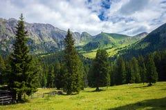Montañas asombrosas de la dolomía Imágenes de archivo libres de regalías