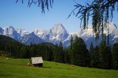 Montañas austríacas fotos de archivo libres de regalías