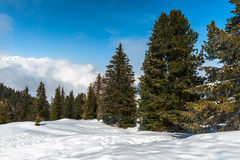 Montañas austríacas, estación de esquí de Mayrhofen Imagen de archivo