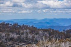 Montañas australianas y Bush nativo en el parque nacional del búfalo del soporte Imagen de archivo libre de regalías