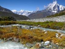 Montañas Autumn River Wilderness Fotografía de archivo