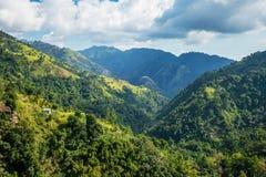 Montañas azules de Jamaica en donde se produce el café fotos de archivo libres de regalías