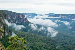 Montañas azules en Australia Foto de archivo