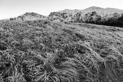Montañas balcánicas Imagenes de archivo