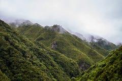 Montañas brumosas de Rabacal en Madeira imagenes de archivo