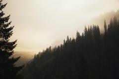 Montañas brumosas frías Foto de archivo