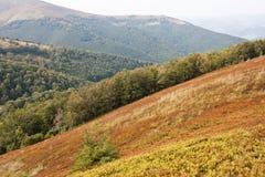 Montañas cárpatas Fotos de archivo