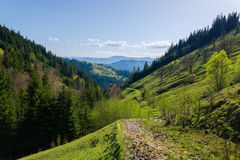 Montañas cárpatas del paisaje Fotos de archivo