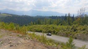 Montañas cárpatas del paisaje hermoso, bosques verdes, en verano fotos de archivo libres de regalías